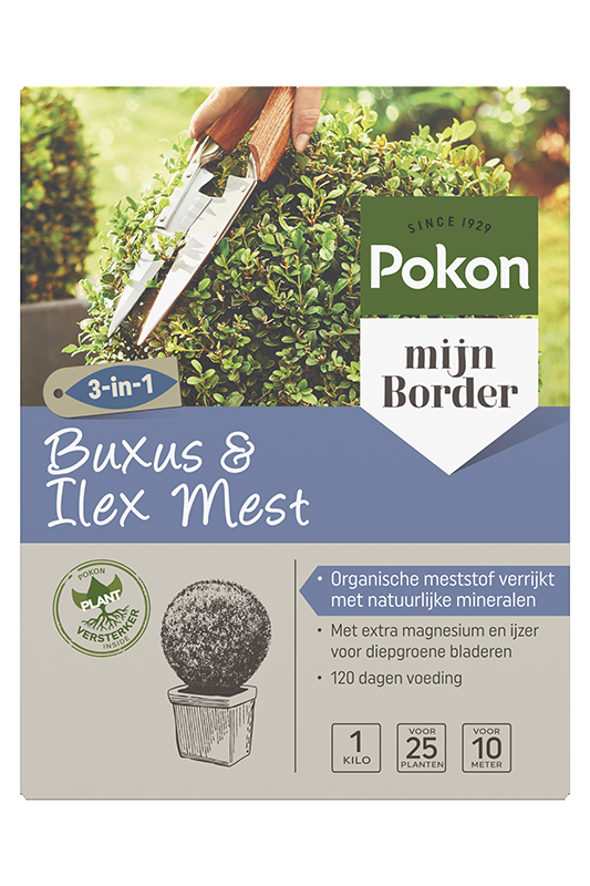 Pokon Buxus en Ilex mest 1 kg