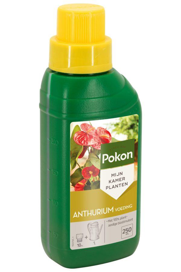 Pokon anthurium voeding 250 ml.