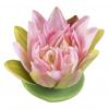 Lotus drijvende bloem, pink 17cm.