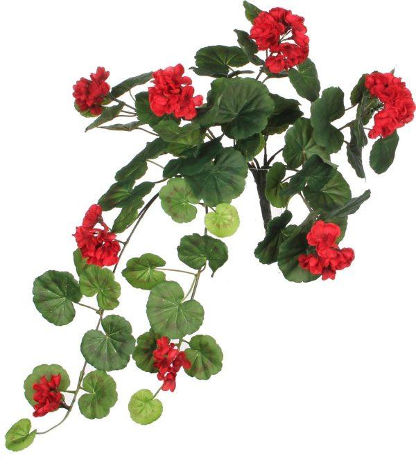 Geranium rood L63cm