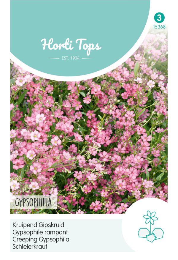 HT Gypsophila, kruipend Gipskruid rose