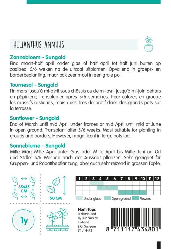 HT Helianthus, Zonnebloem Sungold dubbelbloemig laag