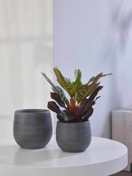 Pot Esra graphite D15 H13