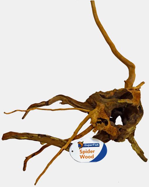 Spiderwood small 20-30cm.