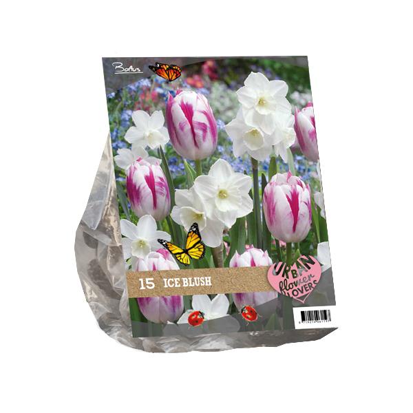Urban Flowers - Ice blush per 15